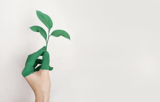 Je eigen huis verduurzamen
